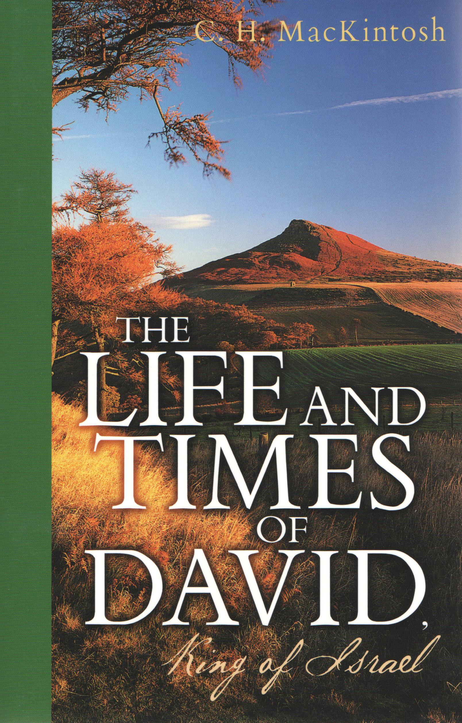 a study on the life of king david Bible woman: a royal princess raped by her brother then abandoned by her father king david why was the rapist not punished absalom's revenge.